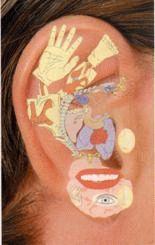 рефлекторные зоны уха