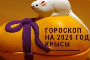 Гороскоп на 2020 год Крысы