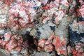 Миниатюра к статье Агальматолит – камень талисман поваров, магические свойства и фото