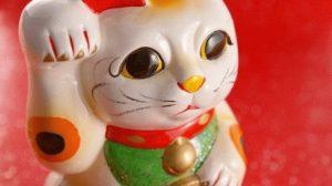 Гороскоп дева кот женщина