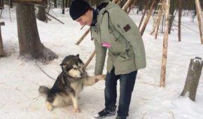 Миниатюра к статье Как выбрать собаку по вашему знаку зодиака